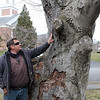 Swampscott040519-Owen-tree warden02