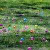 Hundreds of eggs were put out for toddlers to gather during the egg hunt at the Easter Monday event.<br /> Kristi Garabrant - The News-Herald