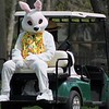 The Easter Bunny arrives at the James A. Garfield Historic Site for the egg roll on the back of a gold cart.<br /> Kristi Garabrandt - The News-Herald