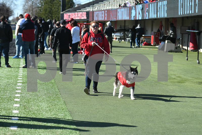 dc.sports.0422.niu football huskie bowl01