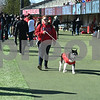 dc.sports.0422.niu football huskie bowl01