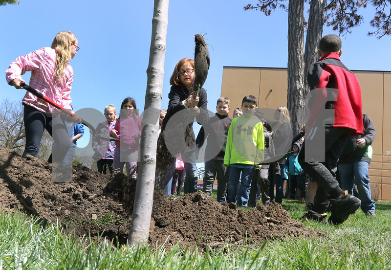 dc.0427.sycamore tree planting01