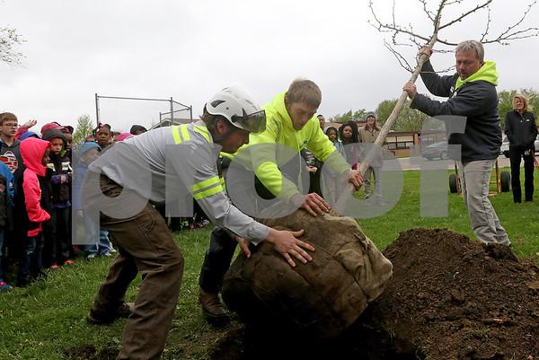 dnews_0427_Tree_Planting_01