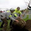 dnews_0427_Tree_Planting_01