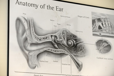 Battling hearing loss with hearing aids