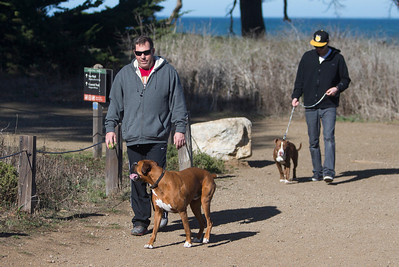 Dog walkers at Mori Point in Pacifica