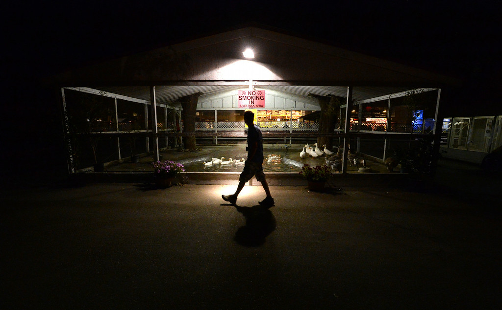 . A person walks through the Alameda County Fair at closing time in Pleasanton, Calif., on Thursday, June 26, 2014. (Doug Duran/Bay Area News Group)