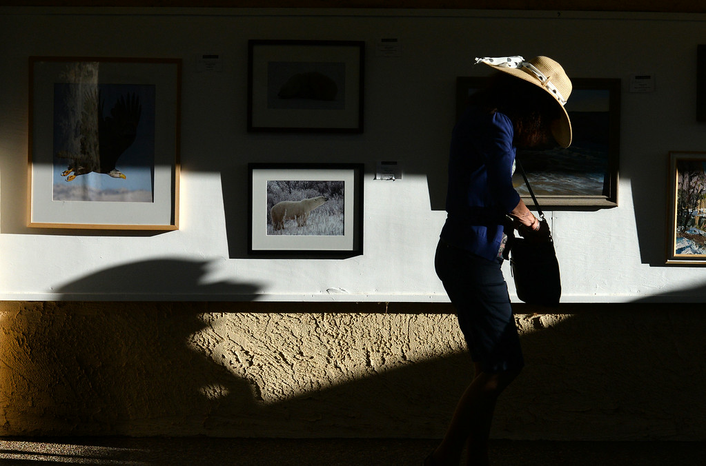 . A fairgoer walks through the Adult Fine Art exhibit at the Alameda County Fair on Saturday, July 5, 2014. (Doug Duran/Bay Area News Group)