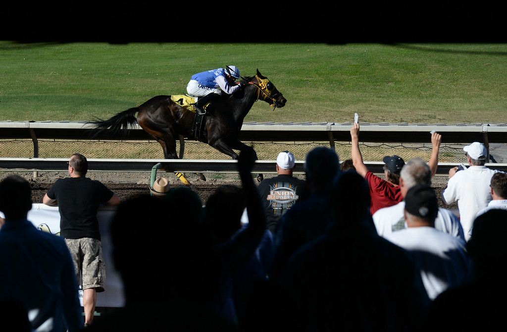 . A jockey rides his horse to the finish line during the 10th race at the Alameda County Fair horse races in Pleasanton, Calif., on Saturday, July 5, 2014. (Doug Duran/Bay Area News Group)