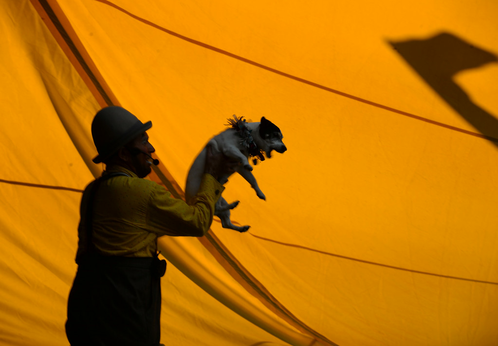 ". Todd Victor of Santa Rosa, owner of the ""Just in Time Circus Family Fun Stage\"" holds his dog during a show at the Alameda County Fair in Pleasanton, Calif., on Wednesday, July 2, 2014. (Doug Duran/Bay Area News Group)"