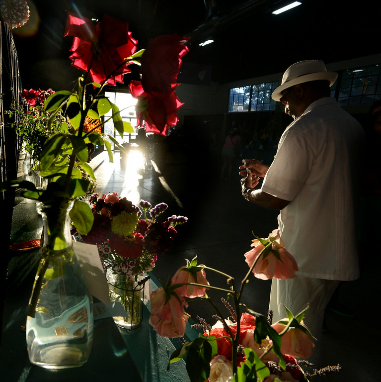 . Fairgoer Don Mann, of Oakland, looks at the cut flowers on display at the Alameda County Fair on Saturday, July 5, 2014. (Doug Duran/Bay Area News Group)