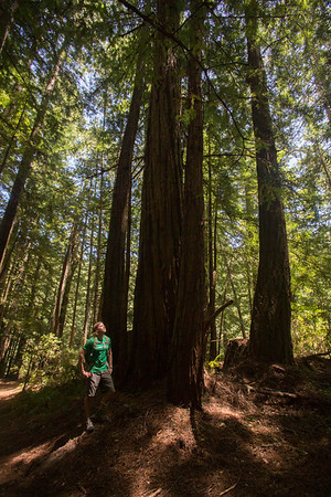 Three undiscovered hiking trails in the Bay Area