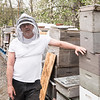 5 4 18 Peabody bee keepers 3