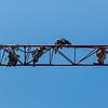 STANDALONE 5 14 20 Lynn crane taken apart 3