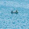 5 21 20 Marblehead Harbor post COVID 8