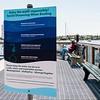 5 21 20 Marblehead Harbor post COVID 4