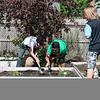 5 24 18 Fallon Elementary gardening 14