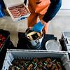 5 1 20 Salem Patriot Seafoods clam bake 4