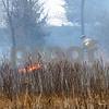 dc.0502.brushfire03