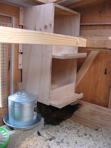 20_chicken_coop_finished