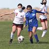 dc.sports.0512.ICHBRSoccer