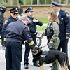 Jonathan Tressler — The News-Herald <br> Geauga Park District K-9 Officer Sniper gets some love at the 32nd Annual Greater Cleveland Peace Officers Memorial Parade and Memorial Service in Downtown Cleveland May 19.