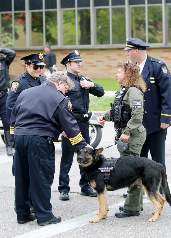 . Jonathan Tressler � The News-Herald <br> Geauga Park District K-9 Officer Sniper gets some love at the 32nd Annual Greater Cleveland Peace Officers Memorial Parade and Memorial Service in Downtown Cleveland May 19.