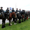 Jonathan Tressler — The News-Herald <br> A portion of the 32nd Annual Greater Cleveland Peace Officers Memorial Parade and Memorial Service's equine contingent stands posted on the west end of Cleveland's Huntington Park May 19.