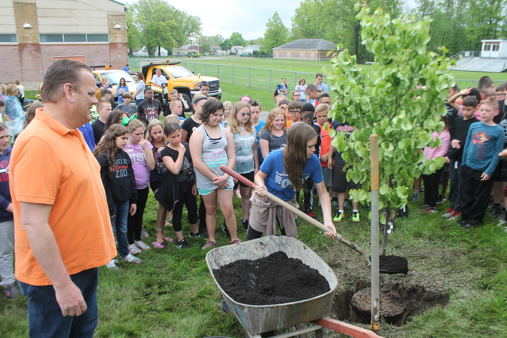 . Kristi Garabrandt � The News-Herald <br> Willowick Mayor Rich Regovich and the fifth grade class from Royalview Elementary School look on while classmate Grace Forwick puts dirt around the tree planted in Manry Park on May 22,  in honor of the class.