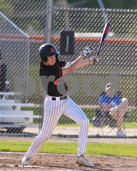 dc.sports.0530, dk regional baseball10