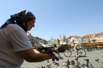 Local woman feeding pigeans, Piata Unirii, Timisoara, The Banat, Romania