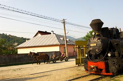 Steam locomotive of a logging train before departure, Viseu de Sus,  Vaser Valley, Maramures, Romania