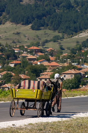 Farmer woman with donkey drawn cart in Eastern Rhodope Mountains, Bulgaria