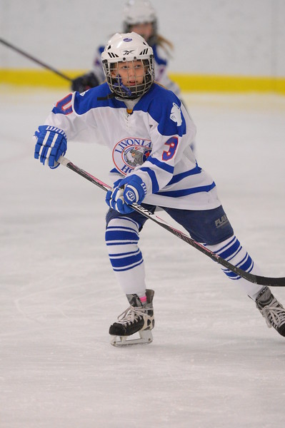 Livonia Knights - Girls Squirt