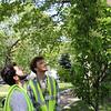 Lynn061218-Owen-tree planting04