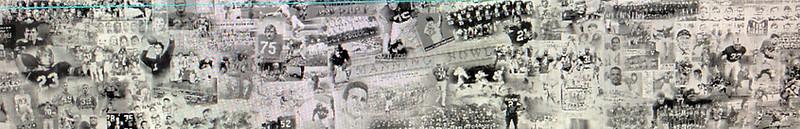 Manning Field Mural