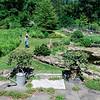 01940 Summer20 gardener