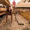 6 20 18 Marblehead boat builders 9