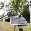 6 22 18 Nahant tree dedication 4