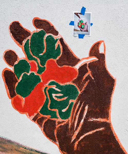6 25 21 SRH Lynn Ernies HarvestTime mural 21