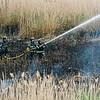 6 3 20 Lynn Frogs Pond brushfire 10