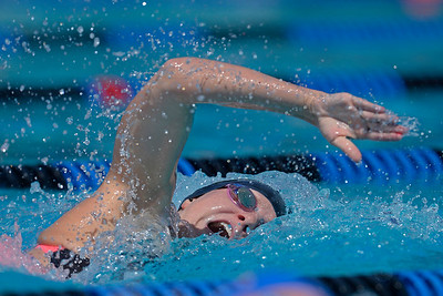North Coast Section Swim Championships in Concord 0517
