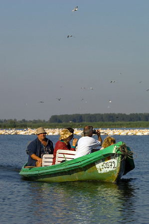 Tourists on Uzlina Lake on a bird watching boat trip, The Danube Delta, Dobrogea, Romania