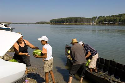 Farmer delivers watermelons across the River Danube, Mahmudia, The Danube Delta, Dobrogea, Romania