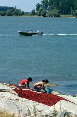 Local women cleaning capets on the bank of Bratul Sfantu Gheorghe, Mahmudia, The Danube Delta, Dobrogea, Romania