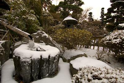 Frosen kakei in a garden covered by snow.