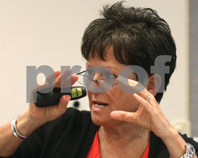 dc.060718.solar.public.hearing04