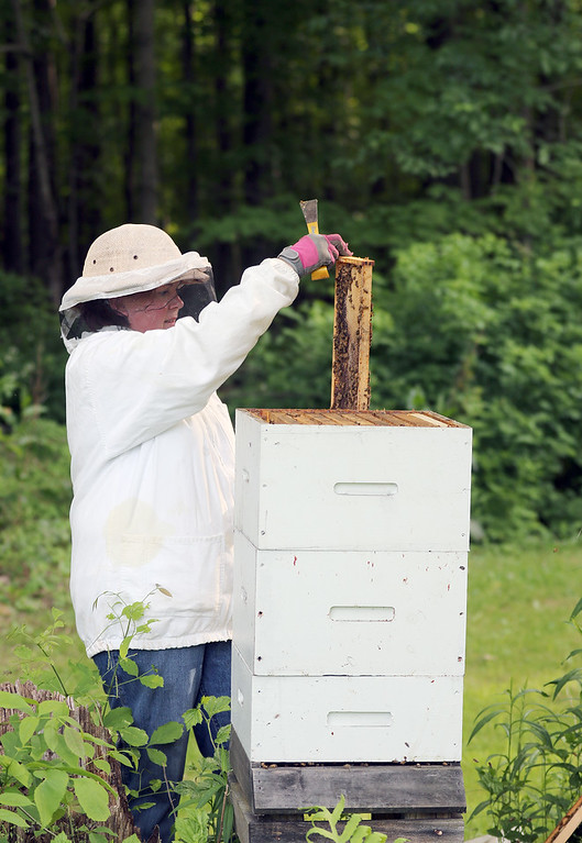 . Jonathan Tressler - The News-Herald. Montville Township resident Brandy Arotin examines the beehive she keeps to help pollinate her garden and produce a little honey. Arotin and her husband, Robert, are relatively new beekeepers, having just gotten into it in the last three years.