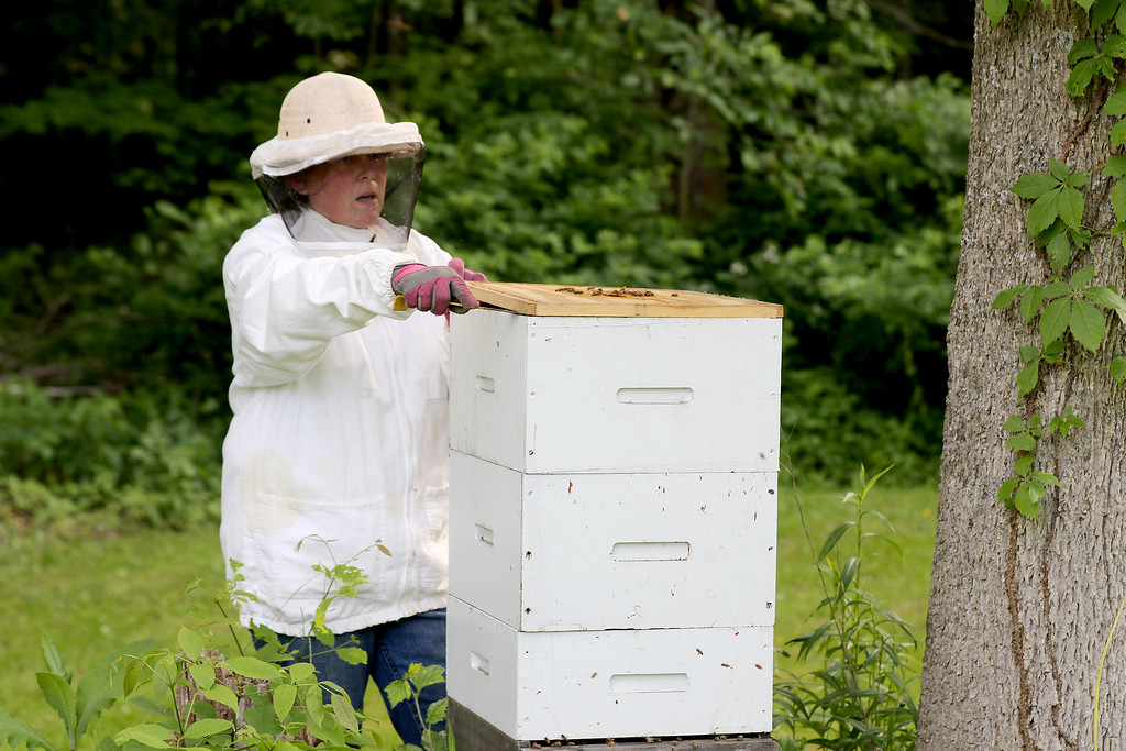 . Jonathan Tressler - The News-Herald. Brandy Arotin - a relative newcomer to the world of beekeeping, having gotten into it about three years ago - prepares to check her hive of honeybees at her Montville Township home in this June 7 photo.