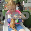 """Aimee Barrows – for Shaw Media<br /> Eleanor Hooper, 7, of Sycamore holds a lizard during the annual """"Rockin' for the Reptiles"""" fundraiser in downtown Sycamore."""
